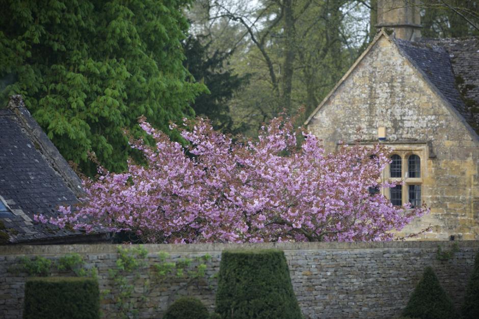 Modern Country Garden: Jinny Blom Garden Design